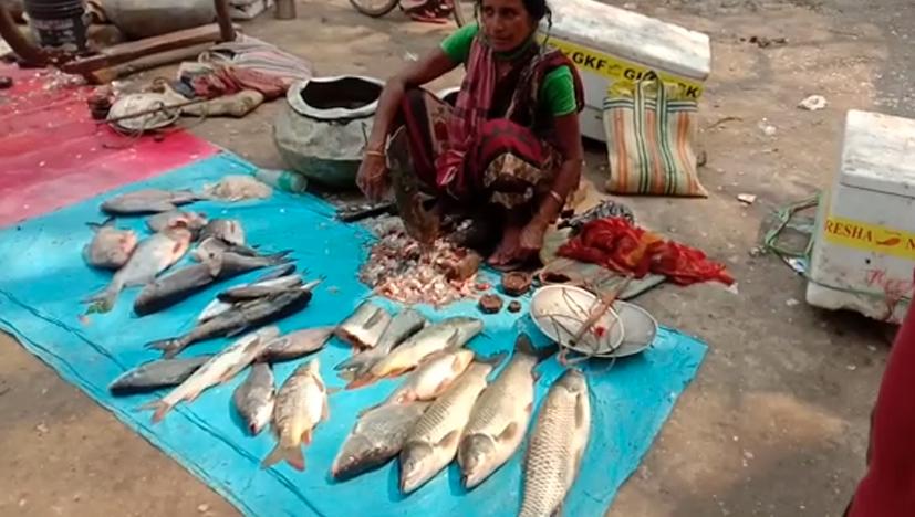 উত্তরপ্রদেশ থেকে গঙ্গায় ভেসে আসতে পারে দেহ, আতঙ্কে মালদার মাছ ব্যবসায়ীরা